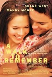 Смотреть фильм Спеши любить