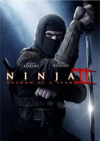 Смотреть фильм Ниндзя 2