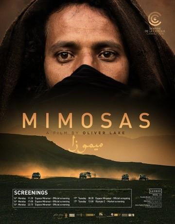 Смотреть фильм Мимозы
