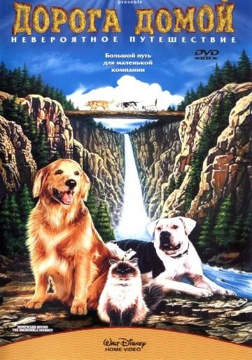 Смотреть фильм Дорога домой: Невероятное путешествие