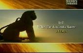 Смотреть фильм О чем знали древние: Индия
