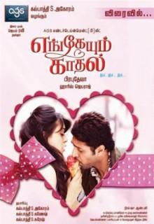 Смотреть фильм Любовь повсюду