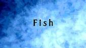 Смотреть фильм BBC: Жизнь. Рыбы