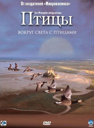 Смотреть фильм Птицы
