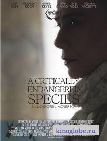 Смотреть фильм Виды под угрозой исчезновения