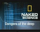 Смотреть фильм С точки зрения науки: Апокалипсис Земли
