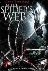 Смотреть фильм В паучьих сетях