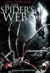 Смотреть фильм В паучьих сетях (Паутина зла)