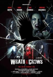 Смотреть фильм Гнев вороны