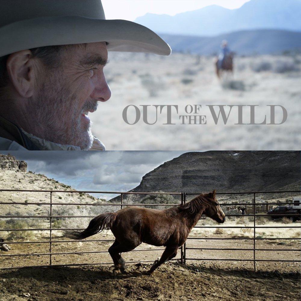 Смотреть фильм Out of the Wild