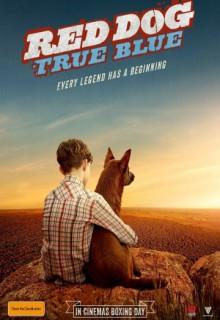 Смотреть фильм Рыжий: Вся правда