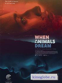 Смотреть фильм Когда звери мечтают