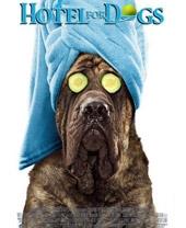 Смотреть фильм Отель для собак