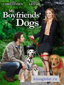 Смотреть фильм Собаки моих бывших