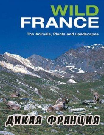 Смотреть фильм Дикая Франция