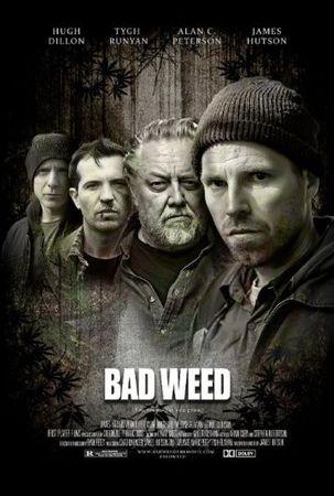 Смотреть фильм Последний урожай